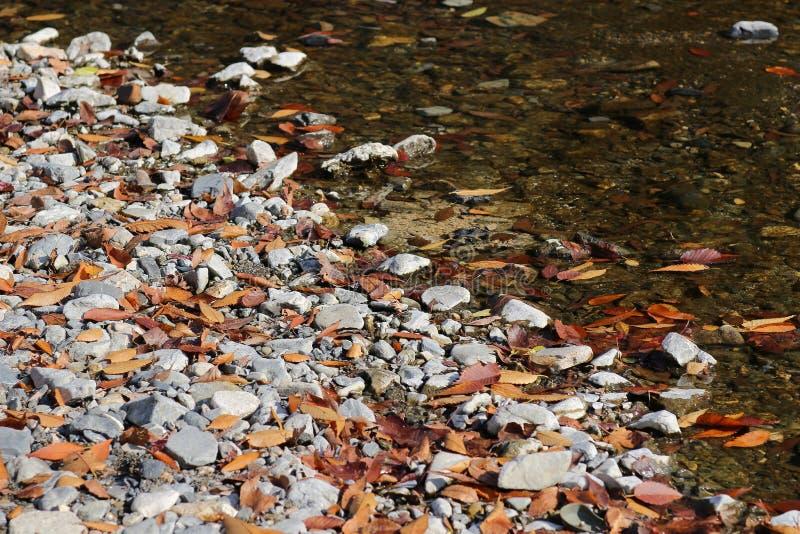 взгляд природы Yase Hieizan Guchi стоковые изображения rf