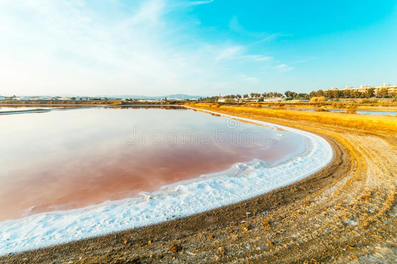 Взгляд пруда испарения соли на запасе вахты фламинго в Olhao, природном парке Ria Формозы, Португалии стоковое фото