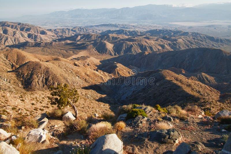 Взгляд пункта перспективы национального парка вала Иешуа стоковые изображения