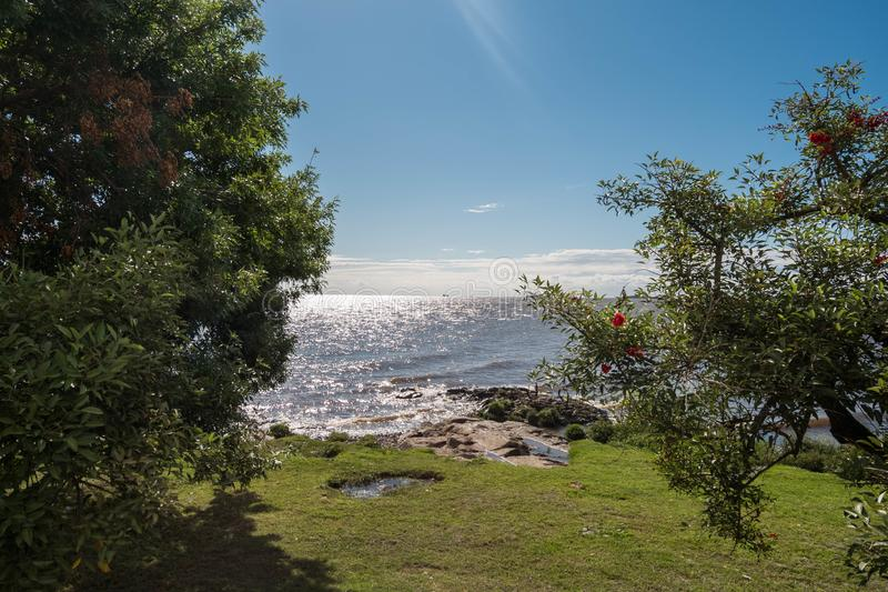 Взгляд реки между деревьями против предпосылки голубые облака field wispy неба природы зеленого цвета травы белое стоковые изображения