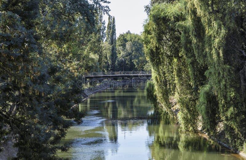 Взгляд реки Bega стоковая фотография rf