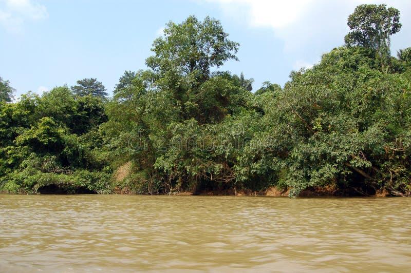 взгляд реки negara taman стоковые изображения rf