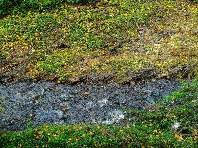 Взгляд реки Palancia к своим пропускам через Jerica стоковые фотографии rf