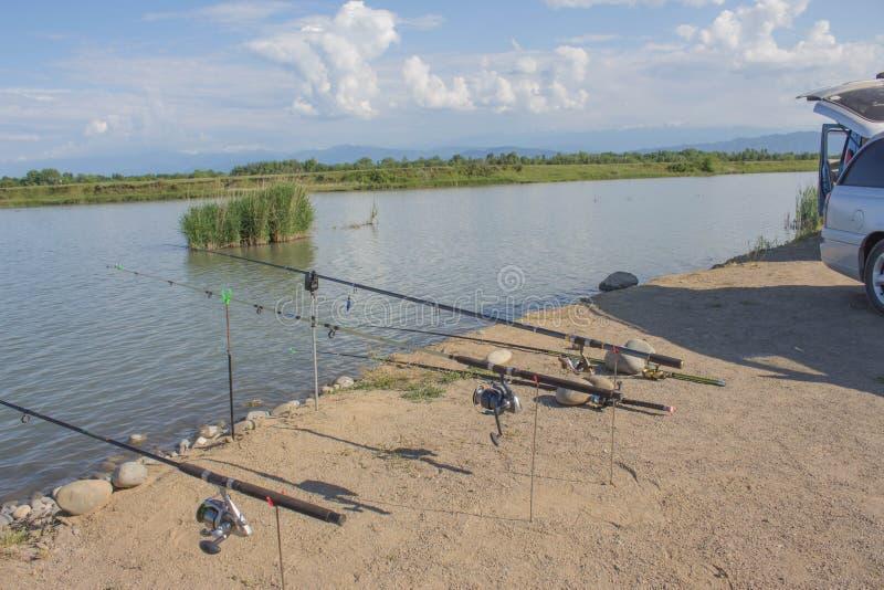 Взгляд рыболовных удочек на стойках на предпосылке красивого озера Рыболовная удочка около озера стоковые изображения