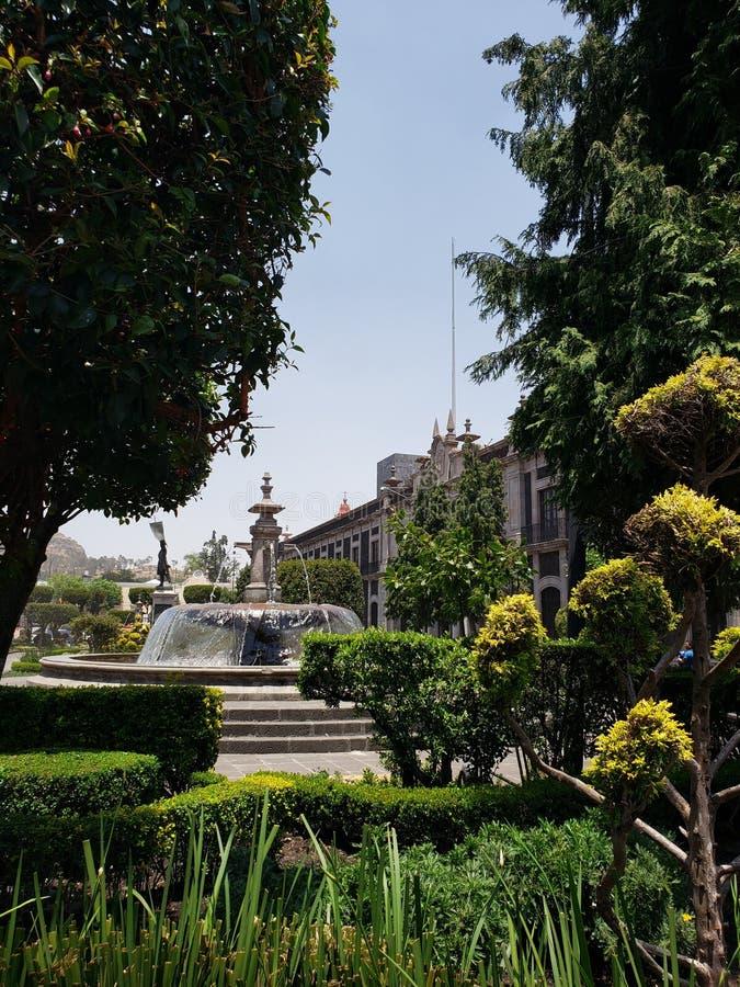 взгляд сада с фонтаном в главной площади города Toluca, Мексики стоковое изображение rf