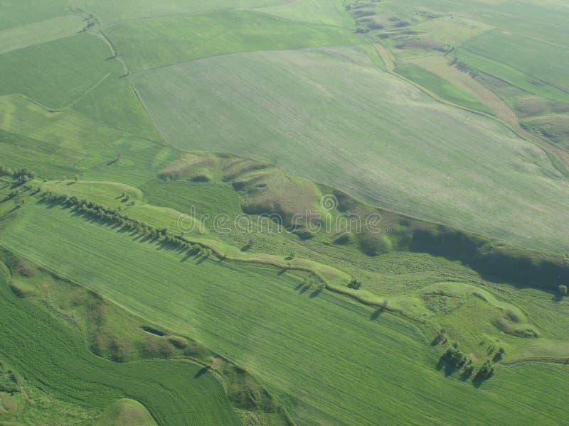 Взгляд сверху зеленых полей стоковая фотография