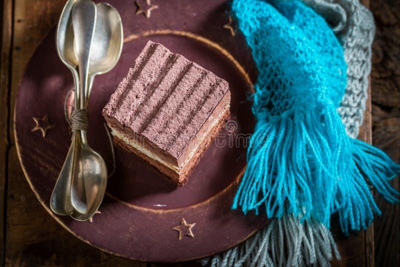 Взгляд сверху очень вкусного шоколадного торта в зиме стоковая фотография