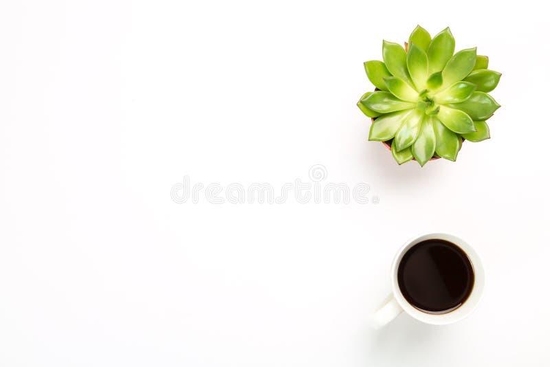 Взгляд сверху пустого стола офиса Зеленое растение в баке с чашкой кофе на белой предпосылке скопируйте космос для вашего текста стоковые фотографии rf
