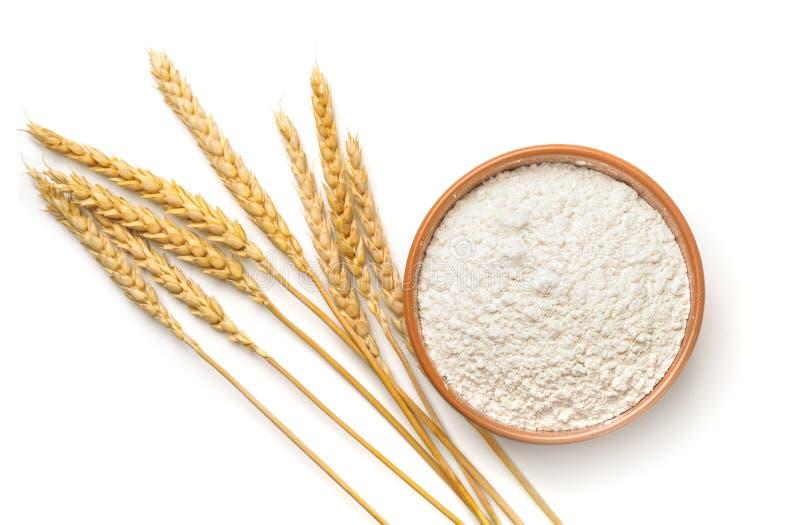 Взгляд сверху пшеничной муки и ушей стоковые изображения