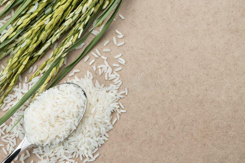 Взгляд сверху риса на ложке стоковое фото rf