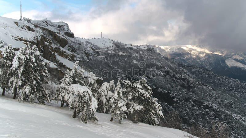 Взгляд сверху снежного ландшафта горы в съемке леса Красивый ландшафт зимы с лесом покрытым со снегом стоковое фото rf