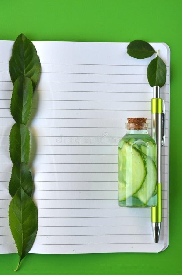 Взгляд сверху страницы тетради с космосом экземпляра, куски огурца в стеклянной пробирке и свежие листья на светло-зеленой предпо стоковая фотография