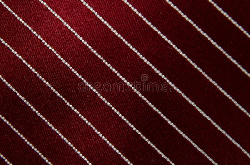 взгляд связи крупного плана striped шеей стоковые изображения