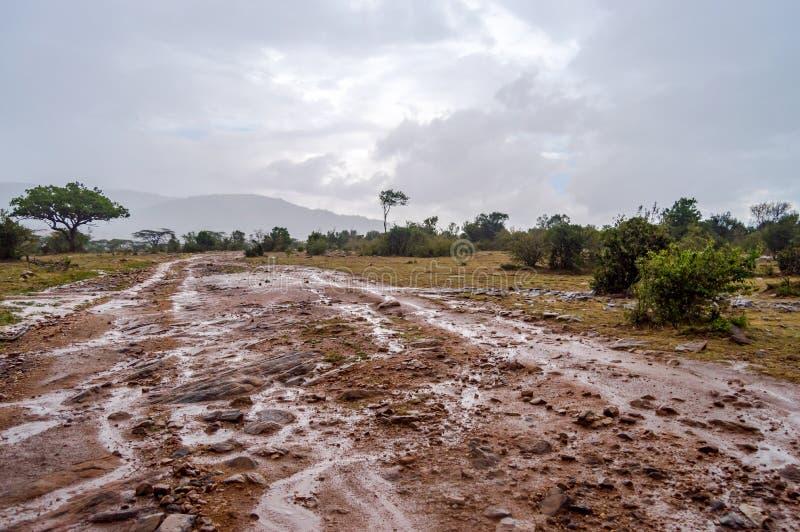 Взгляд следа mara masai после грозы в северозападном стоковая фотография rf