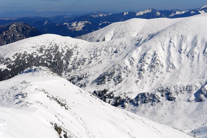 Взгляд снежных пиков и наклонов гор низкого Tatras стоковое изображение