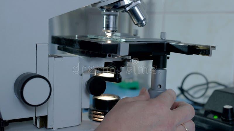 Взгляд со стороны микроскопа в лаборатории стоковое фото