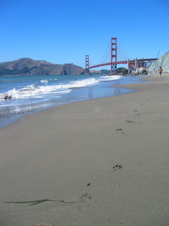 взгляд строба моста пляжа золотистый стоковая фотография rf