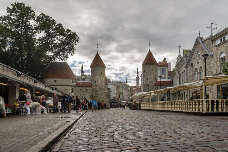 Взгляд строба Viru и средневековых башен старого городка Таллина, Эстонии стоковые изображения rf