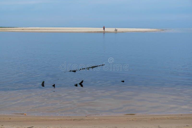 Взгляд утра моря в предыдущей осени стоковое фото