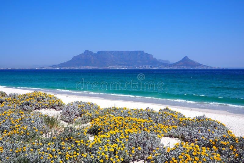 Взгляд через залив для того чтобы поставить гору на обсуждение, Кейптаун, Южную Африку стоковые фотографии rf