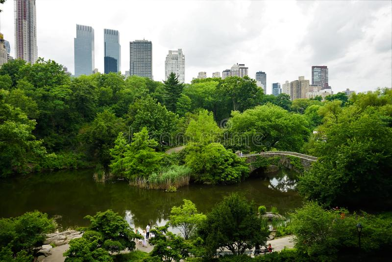 Взгляд Central Park на пасмурный летний день, Манхаттана, Нью-Йорка стоковые изображения