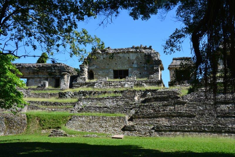 Взгляд Palenque губит Чьяпас мексиканський стоковая фотография rf
