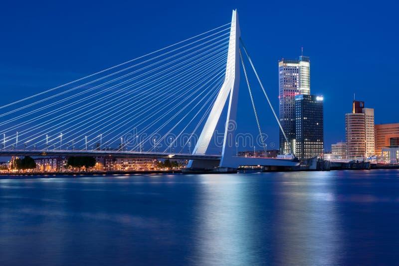 взгляд rotterdam ночи erasmus моста стоковые изображения rf