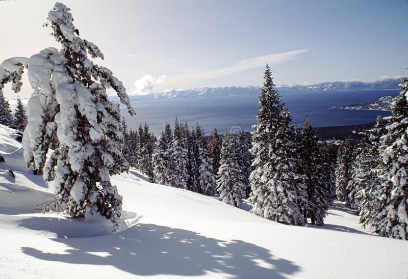 взгляд tahoe озера snowcovered стоковая фотография rf