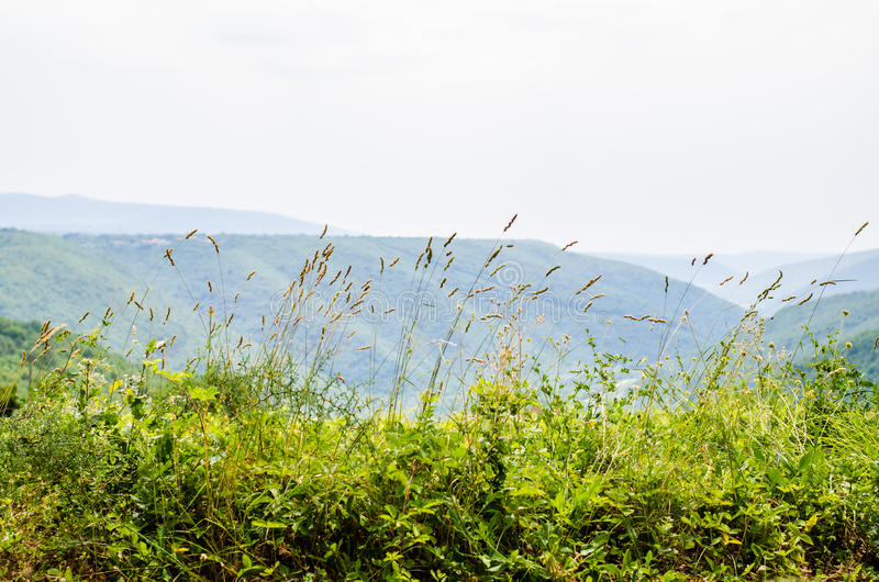 Взгляд ландшафта в Istria стоковое изображение