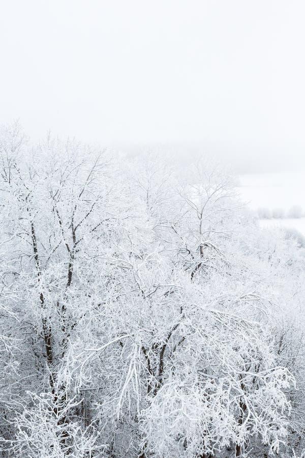 Download Взгляд ландшафта с заморозком Стоковое Изображение - изображение насчитывающей морозно, hoar: 81815067