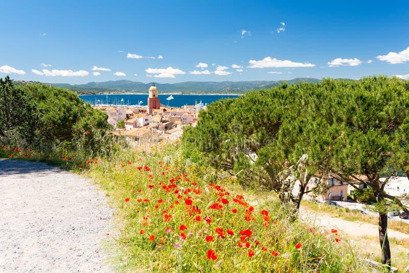 Взгляд весны на St Tropez с маками на французской ривьере стоковая фотография
