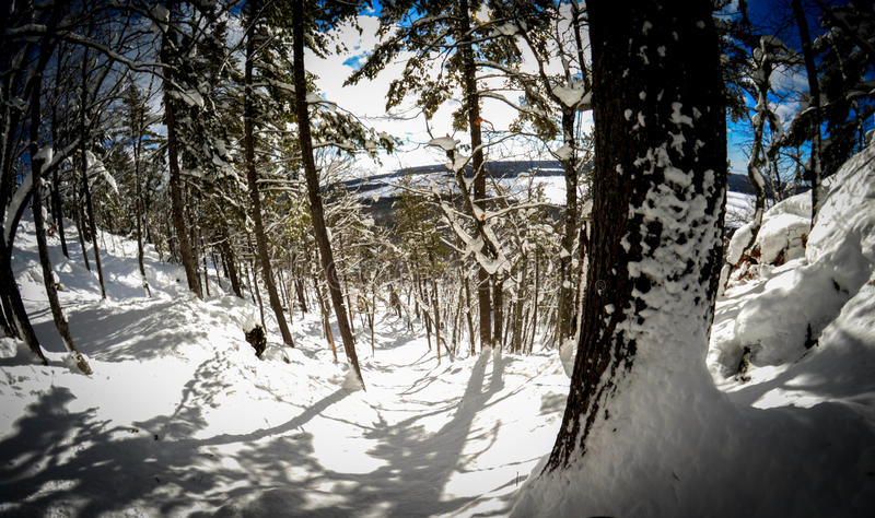 Весьма сноубординг задней страны стоковые изображения