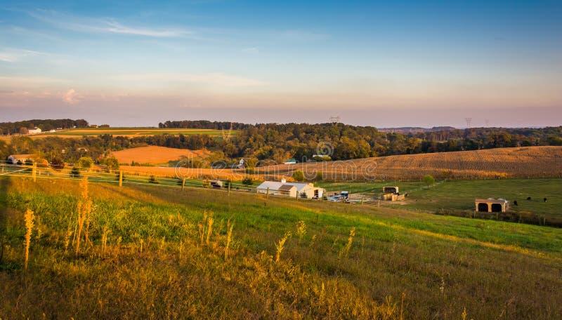 Взгляд вечера полей фермы и Rolling Hills в сельском Ланкастере стоковое фото
