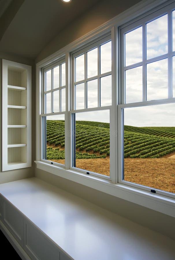 Взгляд виноградников стоковые изображения