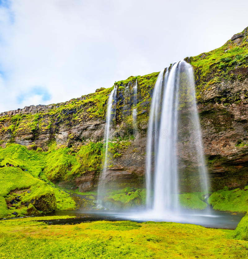 Взгляд водопада Seljalandsfoss - Исландии стоковое фото rf