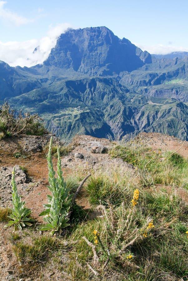 Взгляд в интерьер Острова Реюньон стоковые изображения rf