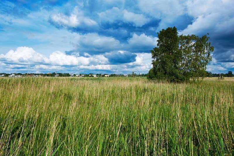 Взгляд в Haapsalu, Эстонии стоковые изображения