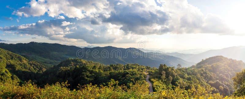 Взгляд горных пиков, coniferous тропическая панорама леса стоковое изображение