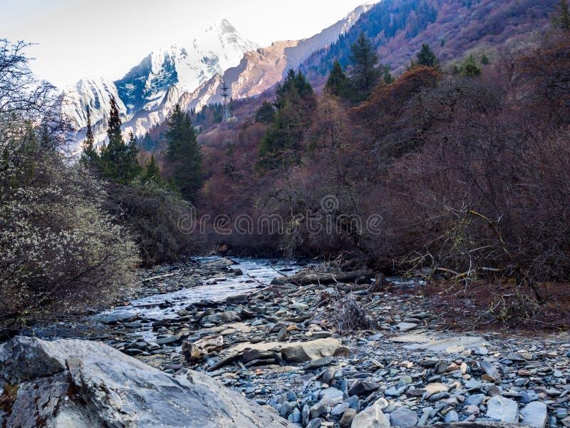 Взгляд горы снега и малый поток в соотечественнике Siguniang Par стоковые изображения