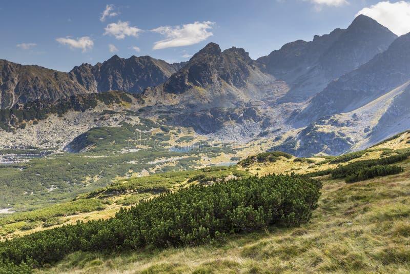 Взгляд гор Tatra от тропы Польша европа стоковые фотографии rf