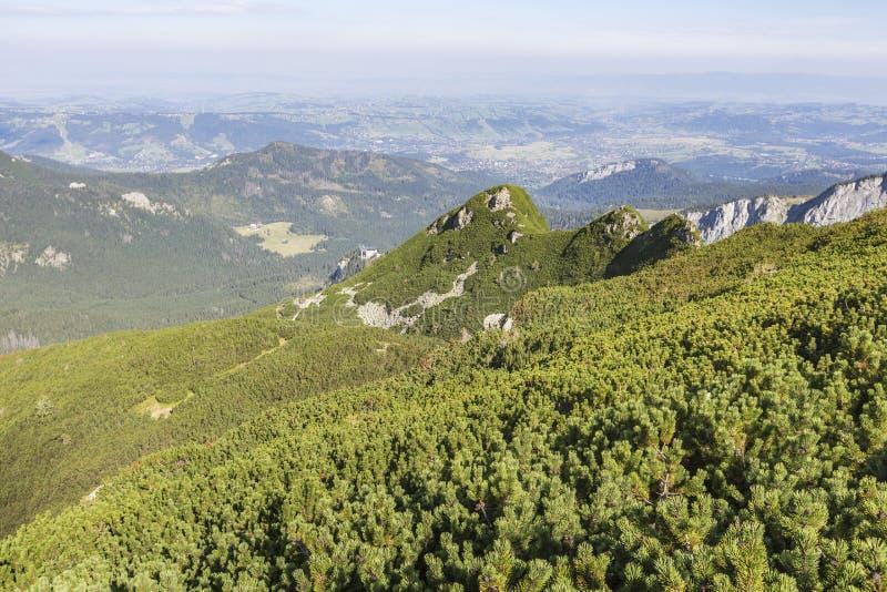 Взгляд гор Tatra от тропы Польша европа стоковые изображения