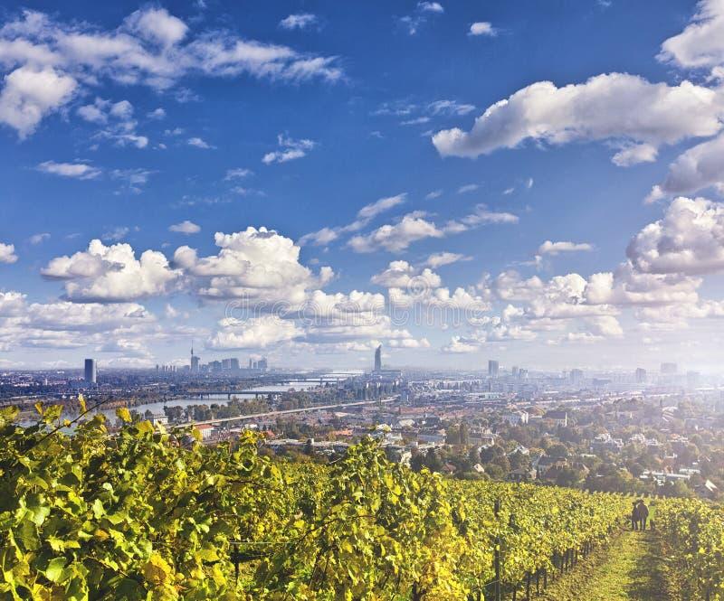 Взгляд Дуная и горизонт вены с виноградниками в фронте стоковая фотография rf