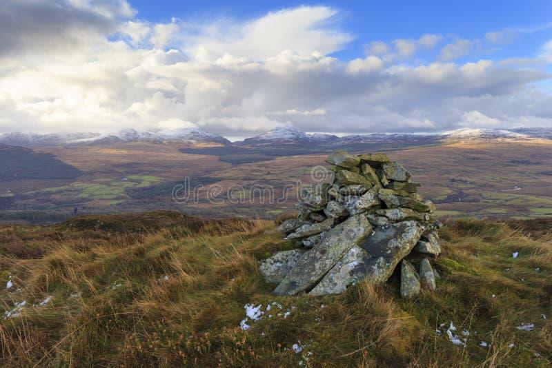 Взгляд леса coed y Brenin стоковое изображение rf