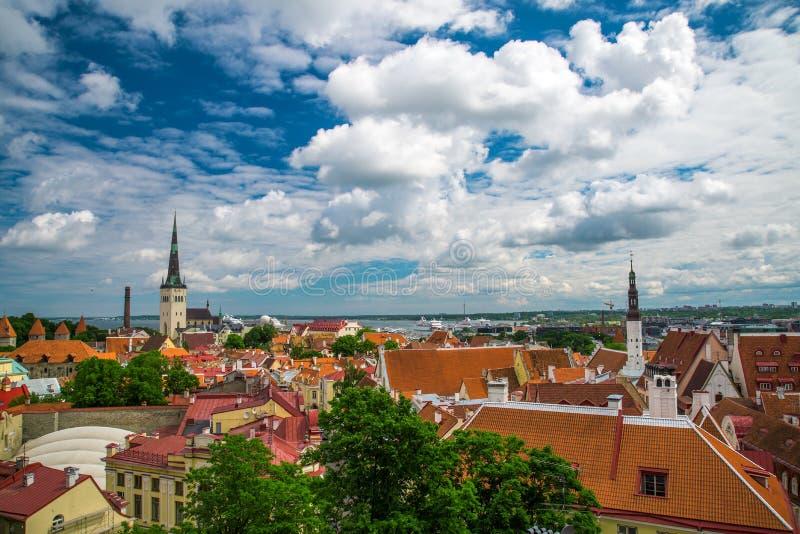 Взгляд лета старого города Эстония, Таллин стоковые фото