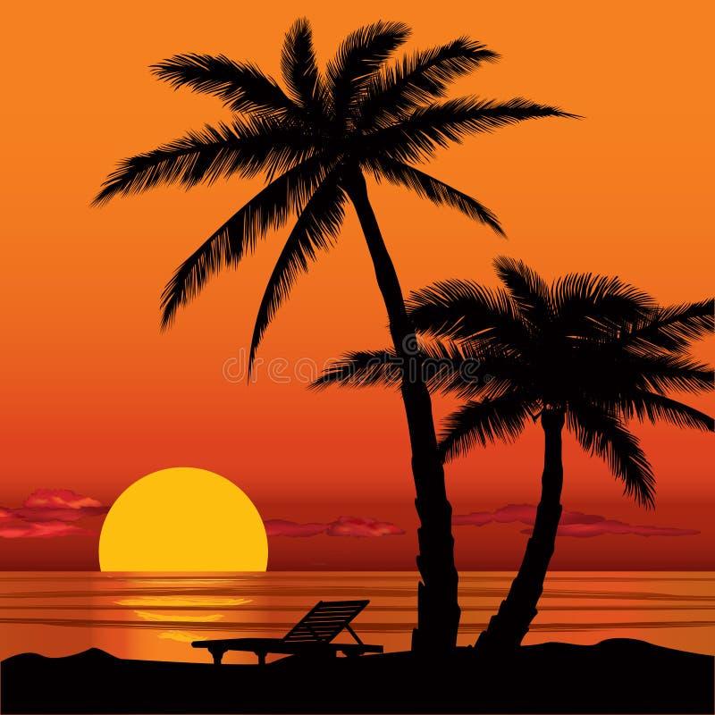 Взгляд захода солнца в пляже с силуэтом пальмы бесплатная иллюстрация