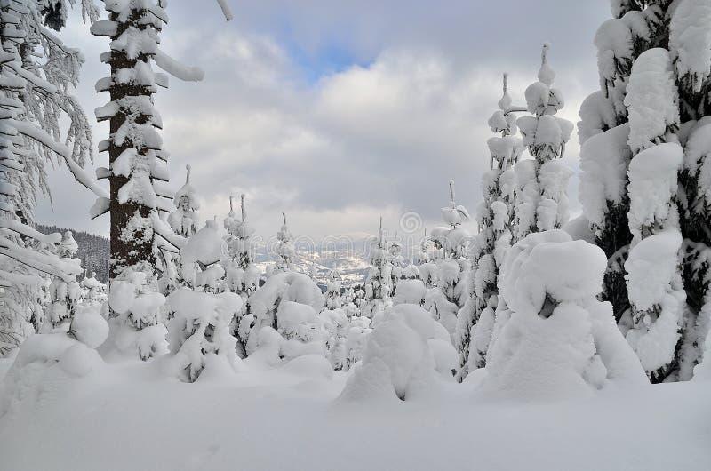 Взгляд зимы в горах стоковое изображение