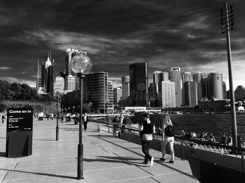Взгляд зданий города Сиднея стоковые фото