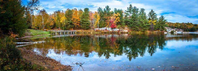 Взгляд красочных деревьев во время сезона осени стоковое фото