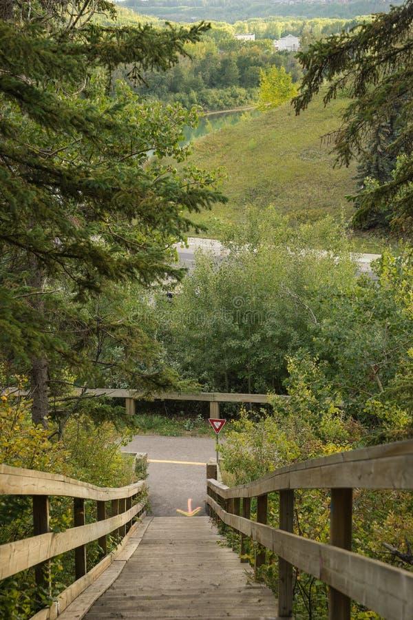 Взгляд к северному Саскачевану River Valley, Эдмонтону стоковые изображения rf