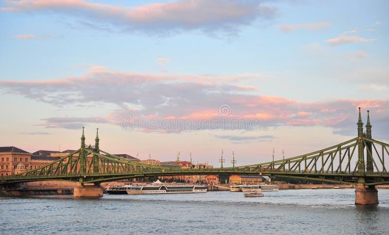 Взгляд моста свободы в центре Будапешта стоковые фото